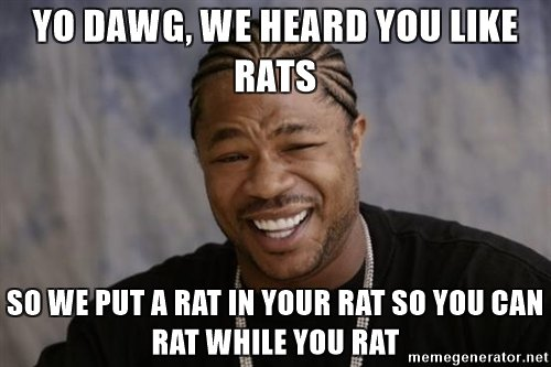yo-dawg-we-heard-you-like-rats-so-we-put-a-rat-in-your-rat-so-you-can-rat-while-you-rat